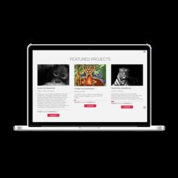 Wordpress Design Fundraising